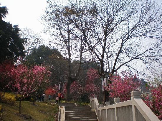 Fujian, China: 福建福州乌山公园