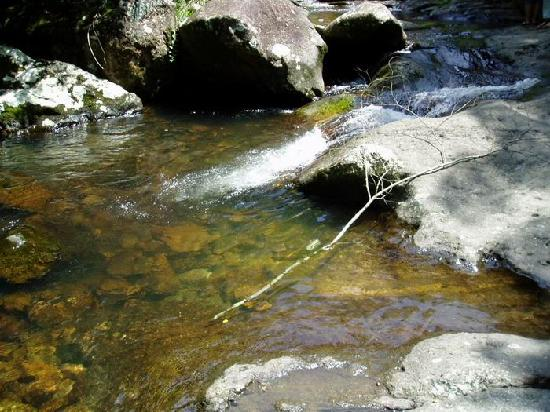 Qingyun Mountain: 清澈的溪流