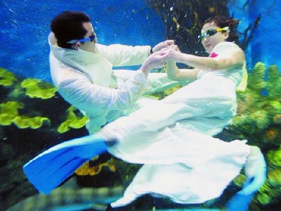 Dalian Laohutan Square : 海洋馆里的水下表演