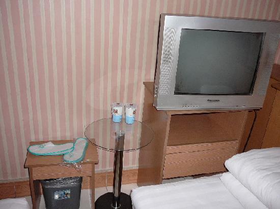 Jialihua Guest House (Beijing Dingfuzhuang): p1220412