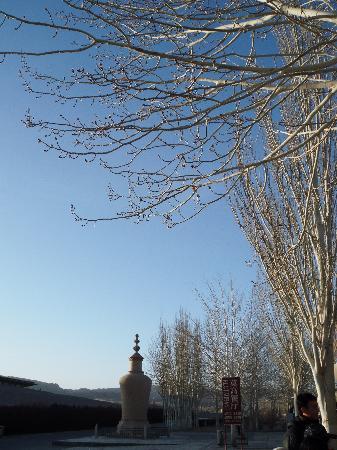 Dunhuang Grotto Art Protection,Examination and Exhibition Center: 清晨的莫高窟