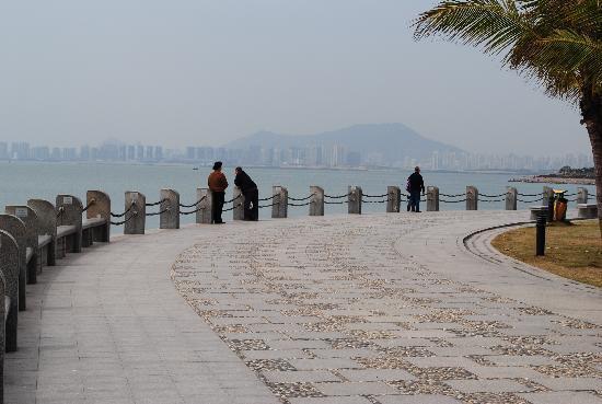 Cagar Alam Bakau Shenzhen