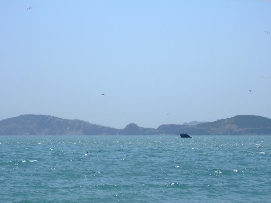 Hailv Island: DSCF0695