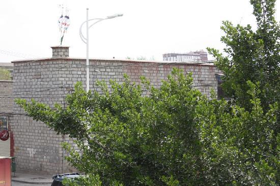 Shambala Family Hostel: 远眺布达拉