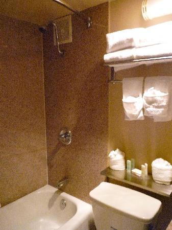 Quality Inn & Suites : 卫生间