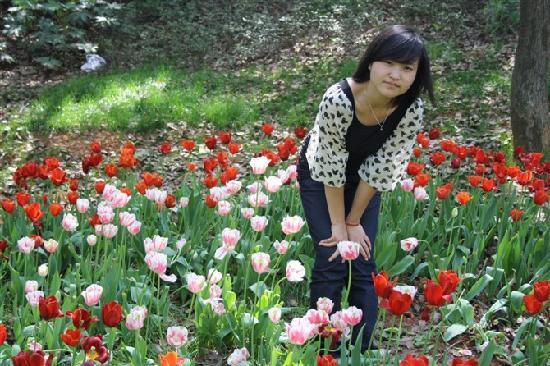 Hunan Forest Botanical Garden : 风头