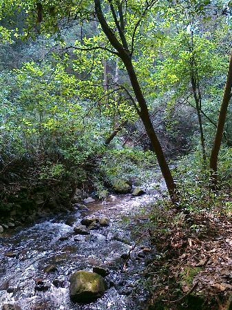 ฝูเจี้ยน, จีน: 福建福州旗山公园