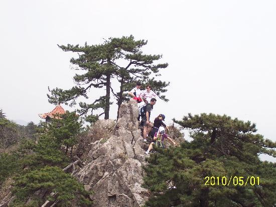 Wanfo Mountain: 2010-5-1万佛山 085