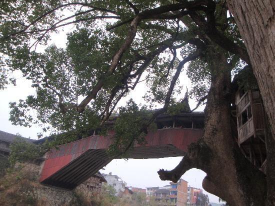Taishun County, Chiny: 传说中的廊桥