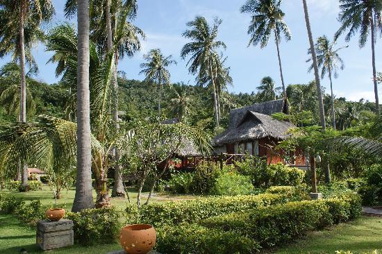 Krabi Town, Thaïlande : 绿树环抱中的酒店房间.