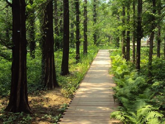 Beijing Botanical Garden