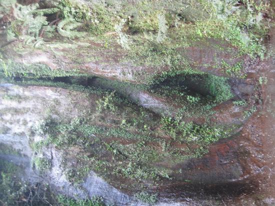 Yanzi Rock of Guizhou