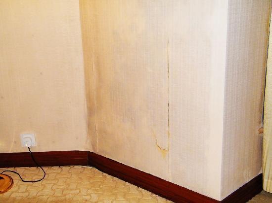 Celebrity Hotel : 美中不足的壁纸