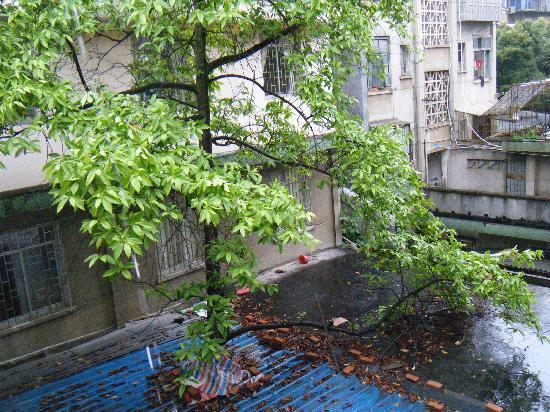 Youjian Hostel: 窗外景色