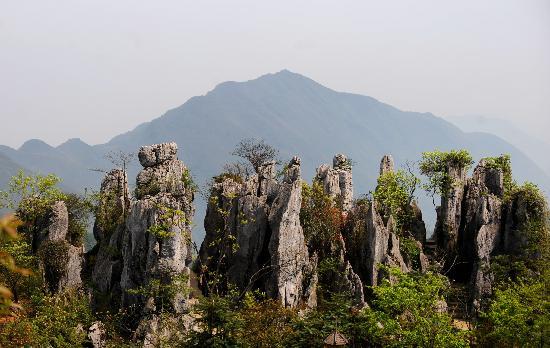 Chongqing Huaying Mountain: 华蓥山大盆景园