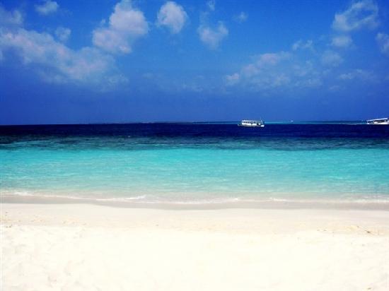 Maldive Victory: 马尔代夫--层次分明的海水