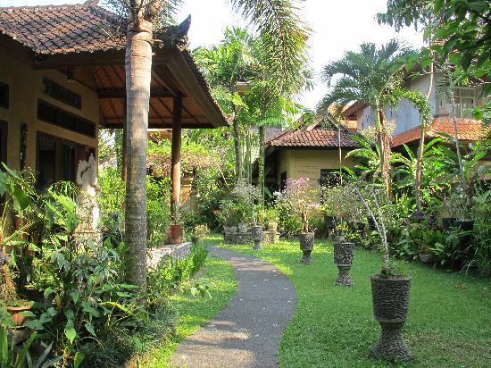 Sehati Guesthouse: sehati的小院子,很漂亮呀~