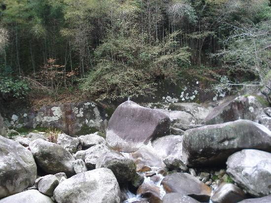 Wolong Canyon