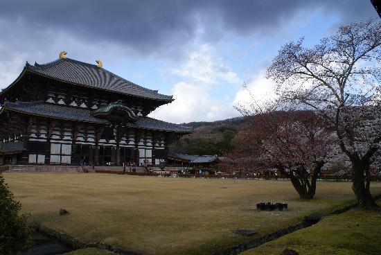 Nara, Japón: 东大寺