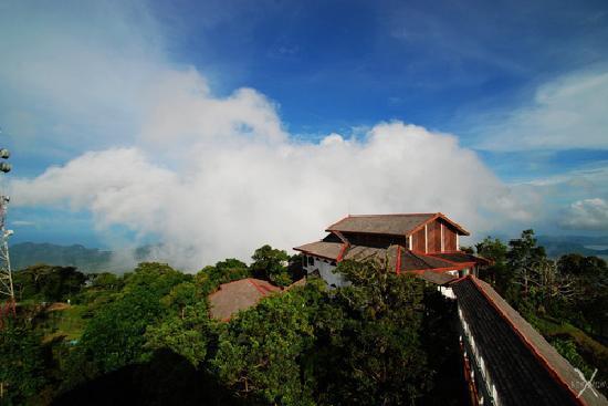 D'Coconut Hill Resort : medium1