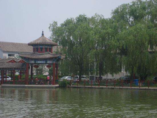 Taishen Xianghe Manor: 水面
