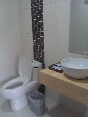 Hongdu Shijia Hotel: 卫生间