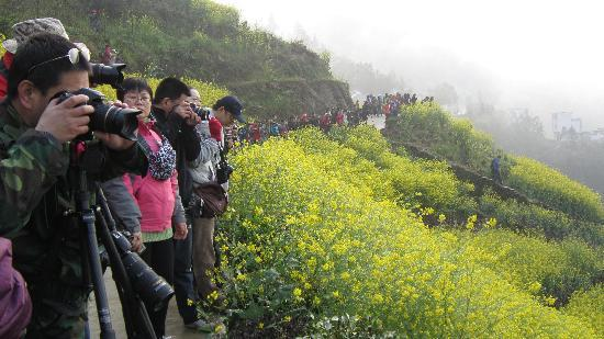 Shitan Village: 观景台上都是人,长枪短炮的