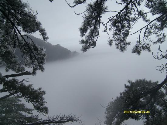 Tiantangzhai National Forest Park: 云海中的天堂寨