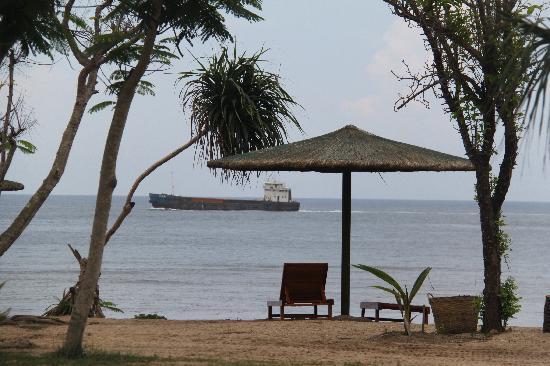 Niuche Bay