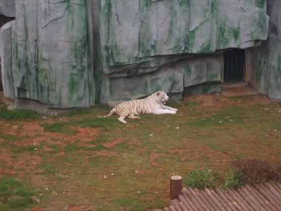 无锡动物园