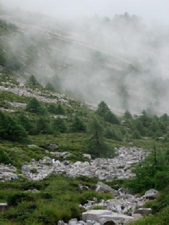 Taibaishan National Forest Park : 高山风景
