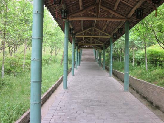 中南百草园