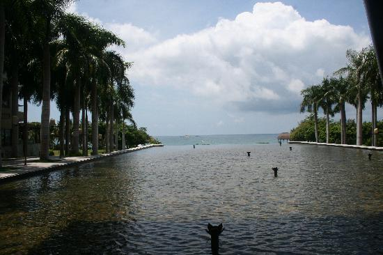 Mangrove Tree Resort: 酒店大堂好像直接连接大海