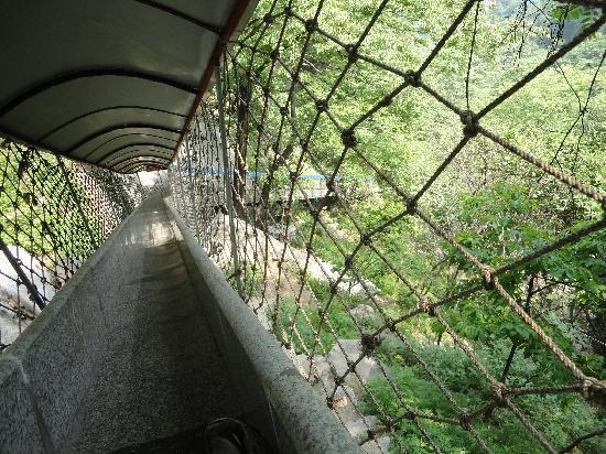 Jiulong Pond Scenic Resort of Qinling: 三潭的滑道