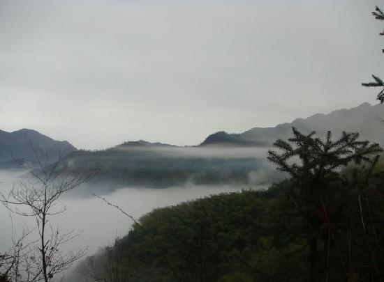 Kuocang Mountain : 雾里看山别有风味