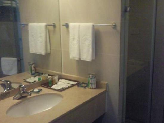 Minshan Hotel: 洗手间