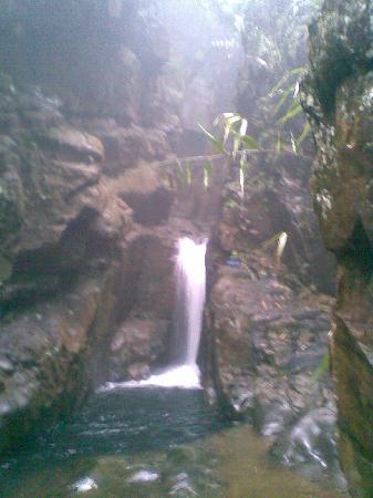Dinghu Mountain Resort: 20100404(253)