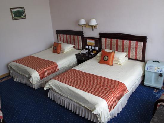 Tibet Hotel: 房间内