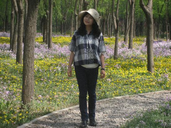 Jiangfu Park: img_0063