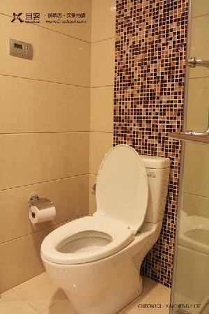 Checkool Serviced Apartment Hangzhou New City: TOTO高品质座便器