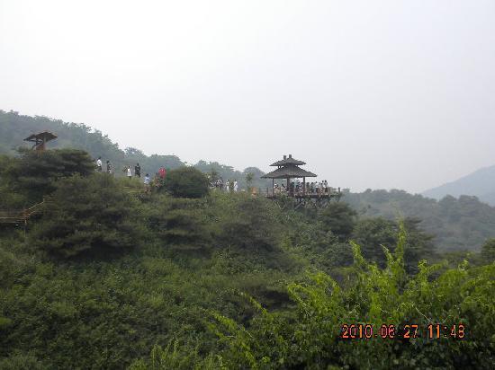 Jiu Ru Shan Waterfalls: 郁郁葱葱