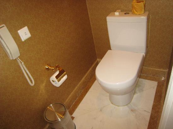 Grand Central Hotel Shanghai: 卫生间中专门有一间放马桶