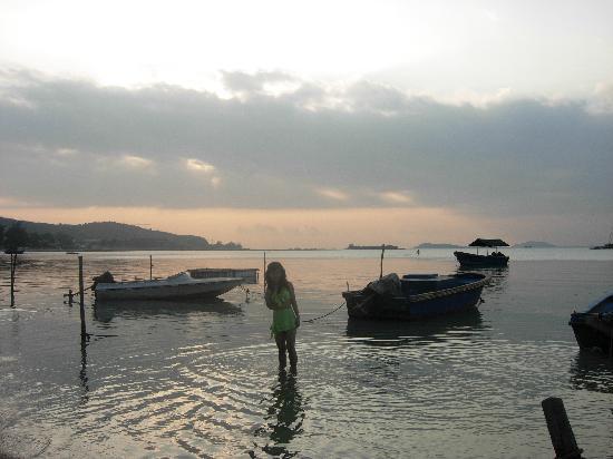 Tiannan Holiday Inn Sanya Luhuitou : 最美的夕阳和我最可爱的朋友