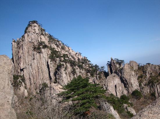 黄山歙县檀干园