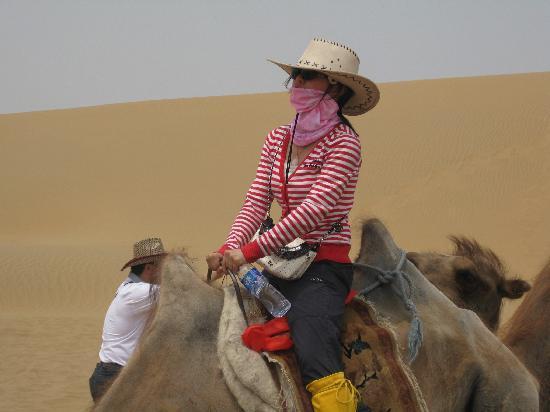 Whistling Dune Bay Tourist Scienc Spot: IMG_2137