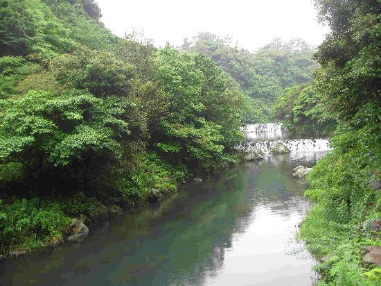 Cheonjeyeon Falls: 河中的小瀑布