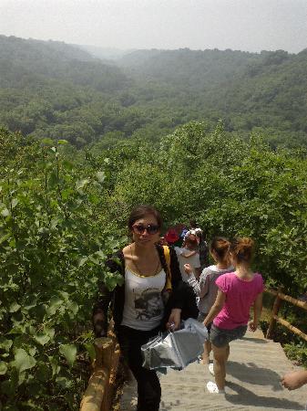 Kerqinhou Qi, China: 四季常青的大青沟地下原始深林