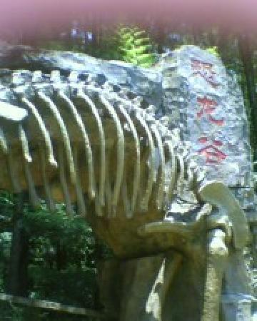 Fogang County, จีน: 恐龙谷