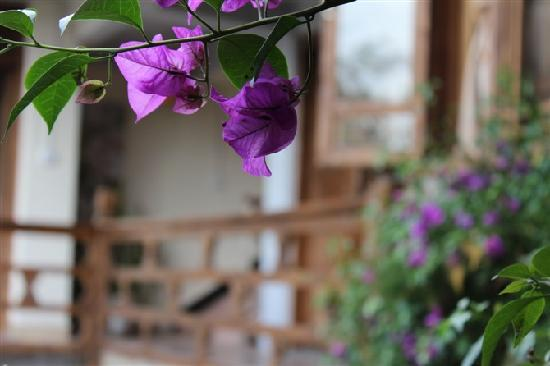 Zui Hua Tang Inn: 那一抹温柔