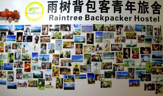 Sanya Raintree Backpacker Hostel: 雨树客人墙